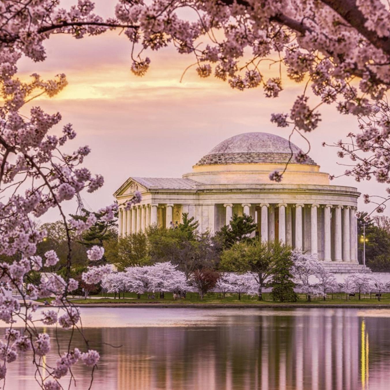Escursione a Washington D.C. (1 giorno)