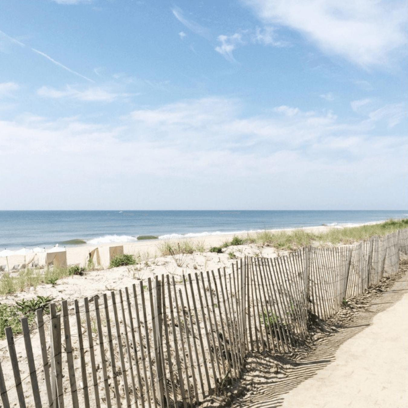 Escursione negli Hamptons (1 giorno)