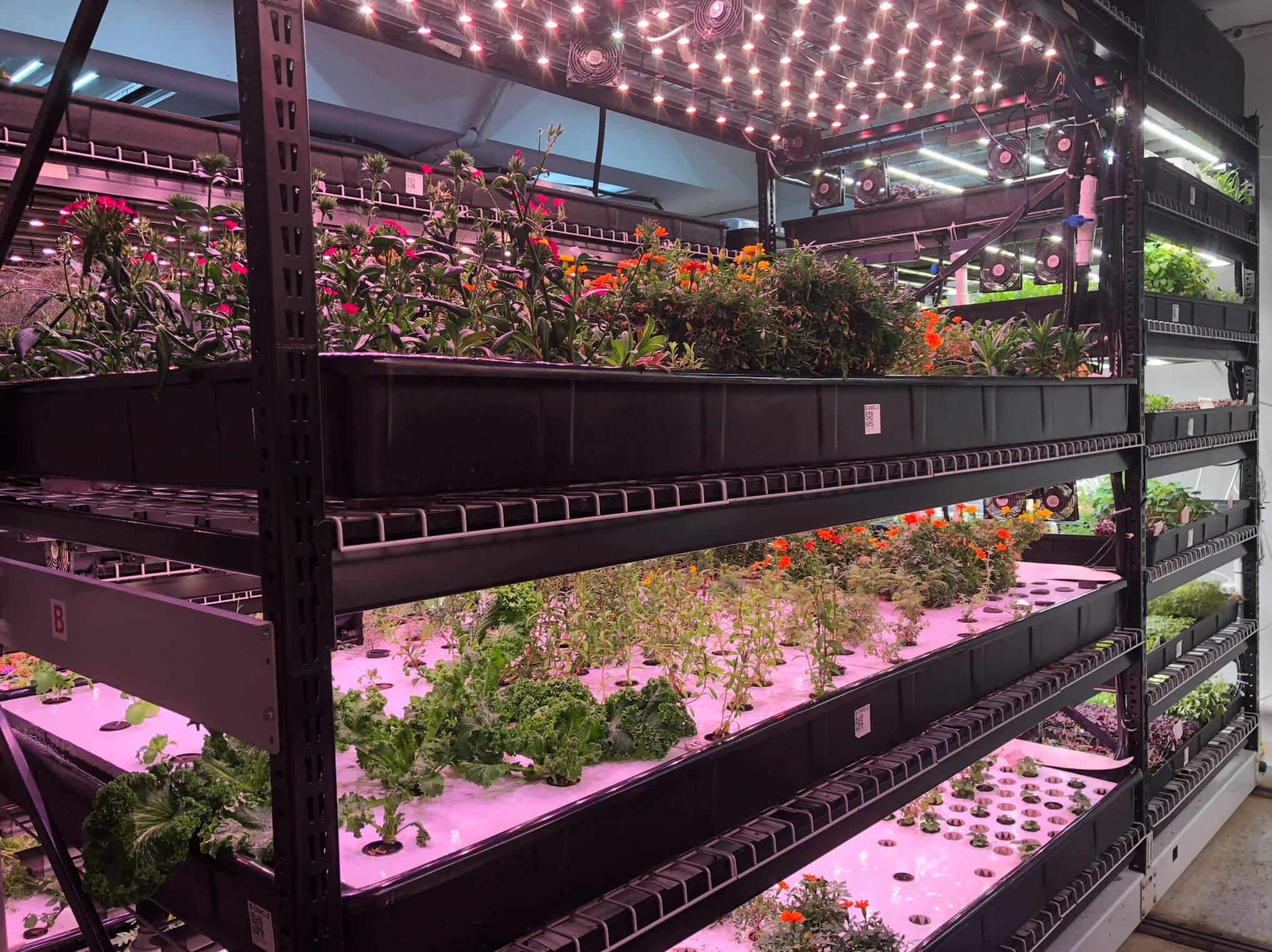 Farm One a New York
